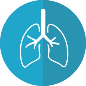Trainingsmaske Test Lunge Atemmaske